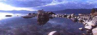 Peter Spain Bonzai Rock