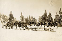 Truckee sled and horses