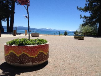 Tahoe Culture Jamie Himes Flower Pots Colored Up