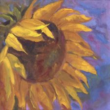 nanette-oleson-sunflowerhead