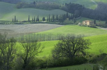 Tuscan Countryside south of Siena