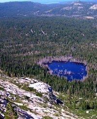 Tahoe Culture Osgood Swamp