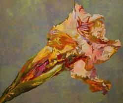 Aging Iris III by Paula Chung