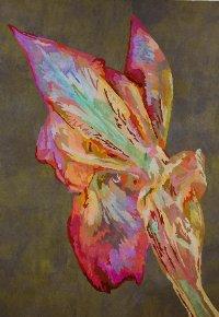 Aging Iris V by Paula Chung