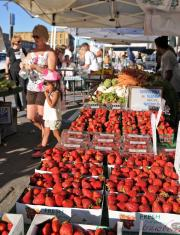 Truckee-Thursdays-Farmers-Market