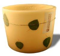 aspen leaf candle